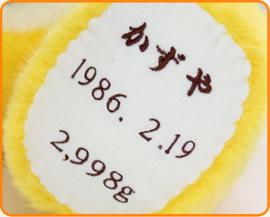 とらのウェイトドールは足裏刺繍。「お名前」「生年月日」「出生時の体重」 の3項目をお入れします。